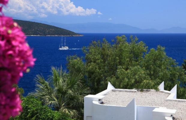 фотографии отеля Bodrum Bay Resort (ex. Virgin Bodrum, Joy Club Bodrum) изображение №3