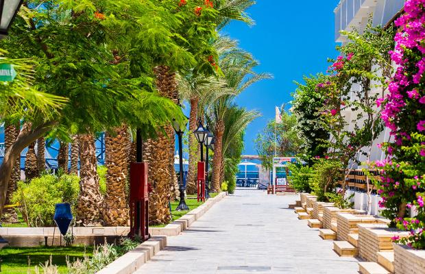 фотографии Grand Hotel Hurghada by Red Sea Hotels изображение №16