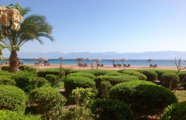 фотографии отеля Miramar Resort Taba Heights (ex. Hyatt Regency Taba Heights) изображение №3