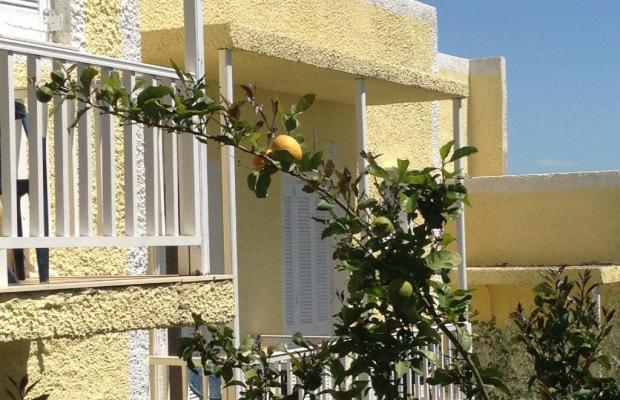 фотографии отеля Galini Mare изображение №7