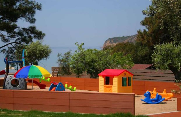 фото отеля Royal Paradise Beach Resort & Spa изображение №5