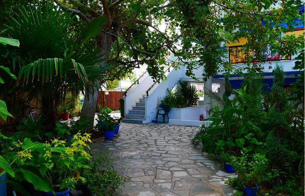 фотографии Blue Sea Beach Hotel & Resort изображение №4