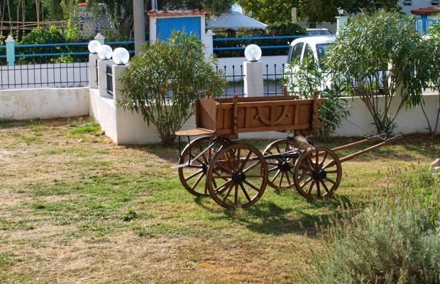 фотографии отеля Aegean Sun Apartments изображение №11