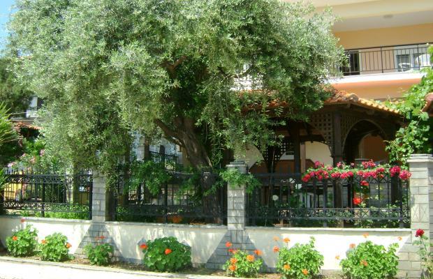 фото отеля Akti Pefkari Hotel изображение №13