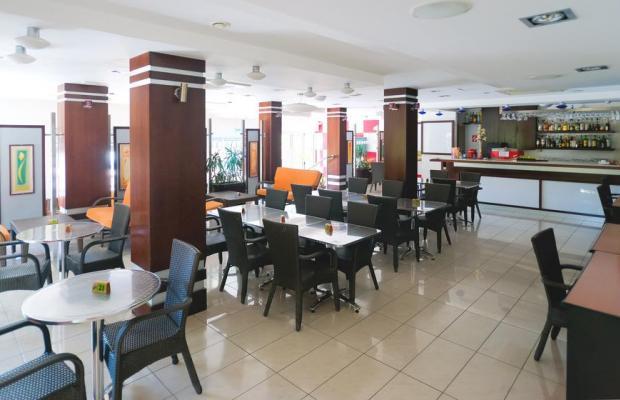 фотографии отеля Marion Hotel изображение №27