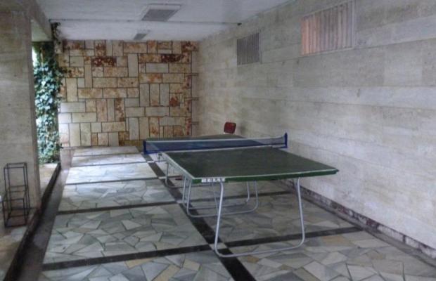 фото Ahilea (Ахилея) изображение №58