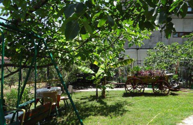фотографии Family Hotel Rusalka изображение №4