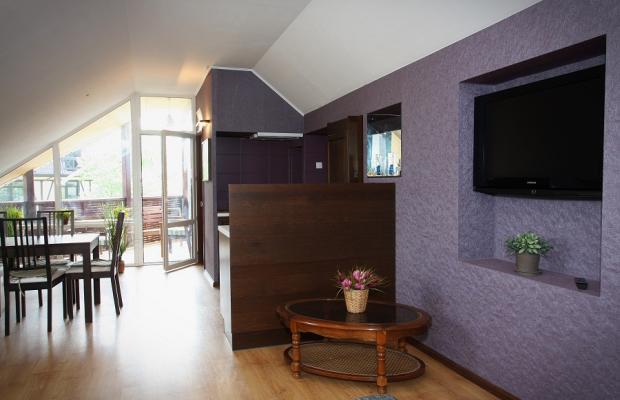 фото отеля Лиза (lisa) изображение №13