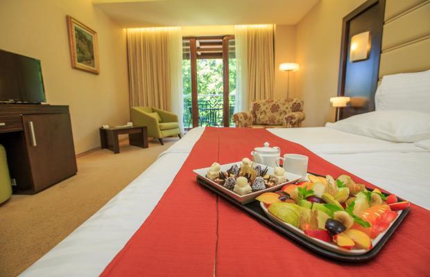 фото отеля Park Hotel Pirin изображение №13