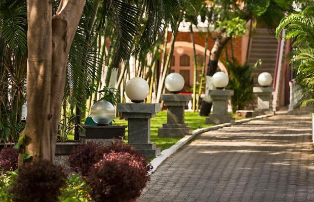 фотографии отеля Ideal Beach Resort изображение №7
