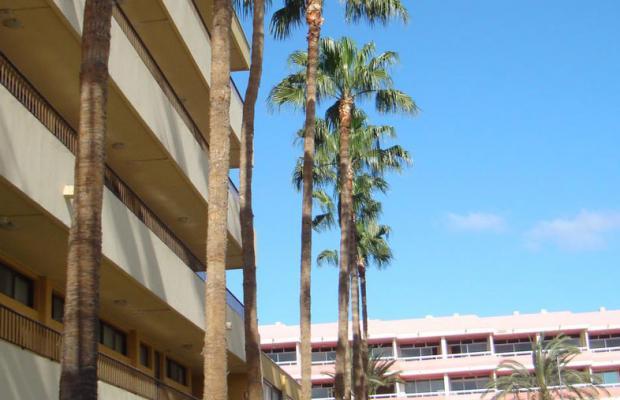фотографии Los Cactus изображение №16