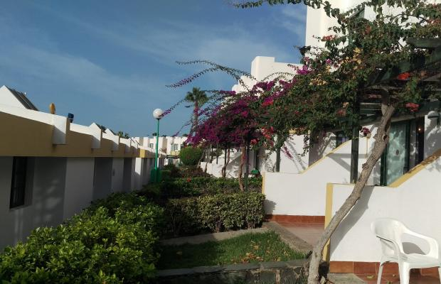 фотографии отеля Capri Bungalows изображение №7