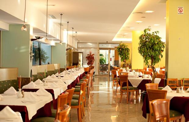 фотографии отеля Paradise Costa Taurito изображение №27