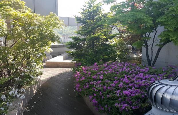 фотографии Hyundai Residence изображение №12