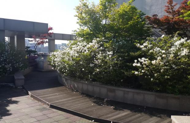 фото Hyundai Residence изображение №10