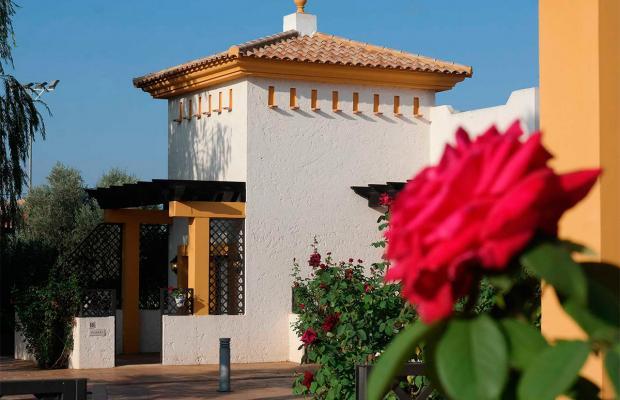 фото Hacienda Real Los Olivos изображение №50