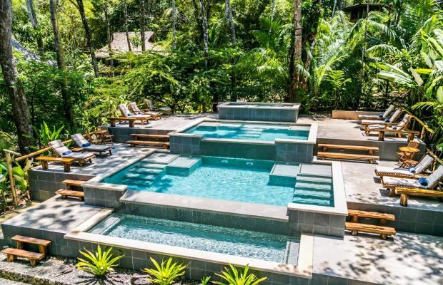 фото отеля Copa De Arbol Beach & Rainforest Resort изображение №1