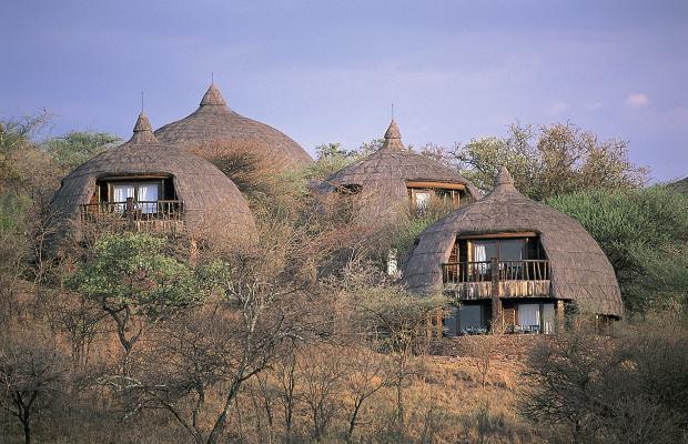 фотографии отеля Serengeti Serena Safari Lodge изображение №15