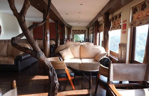 фотографии отеля Treetops изображение №27