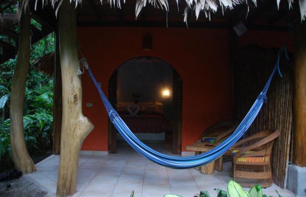 фотографии отеля Cariblue Beach and Jungle Resort изображение №79