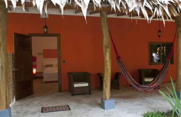 фотографии отеля Cariblue Beach and Jungle Resort изображение №47