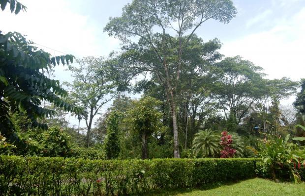 фотографии отеля Ciudad Perdida Ecolodge изображение №7