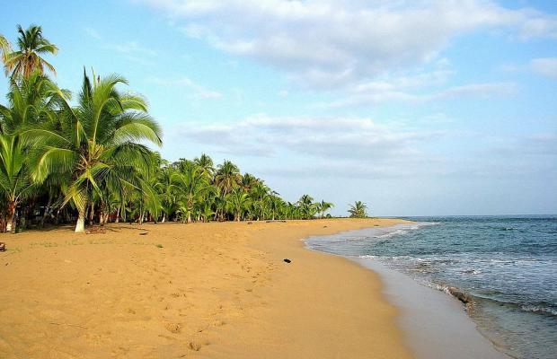 фотографии отеля Suerre Caribbean Beach изображение №15
