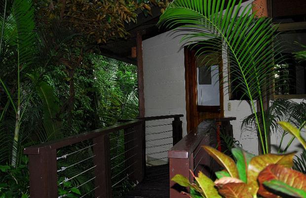 фото Buena Vista Luxury Villas изображение №34
