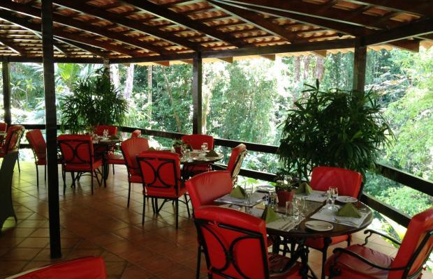 фотографии Casa Corcovado Jungle Lodge изображение №100