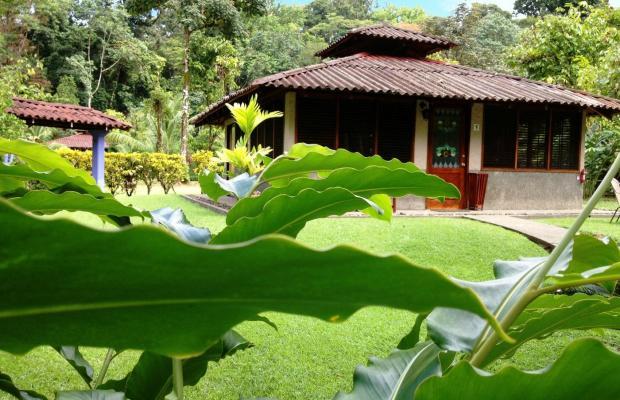 фото Casa Corcovado Jungle Lodge изображение №78