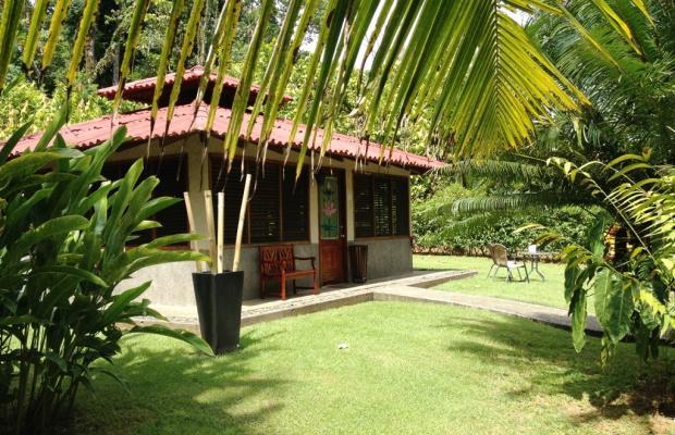 фото отеля Casa Corcovado Jungle Lodge изображение №73
