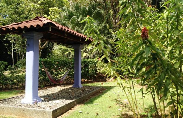 фотографии Casa Corcovado Jungle Lodge изображение №72