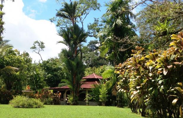 фото Casa Corcovado Jungle Lodge изображение №46