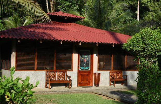 фотографии Casa Corcovado Jungle Lodge изображение №20