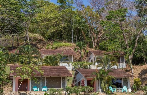фото отеля Karahe Beach Hotel изображение №65