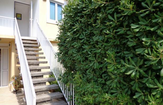 фотографии отеля Apartments Tomy изображение №3