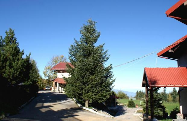фотографии Naoussa Mountain Resort (ex. Naoussa Natura) изображение №60