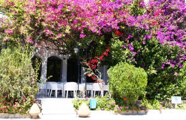 фотографии отеля Skala Hotel изображение №3