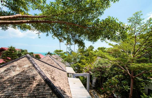 фотографии отеля Punnpreeda Beach Resort (ex. Punnpreeda Hip Resort Samui) изображение №47