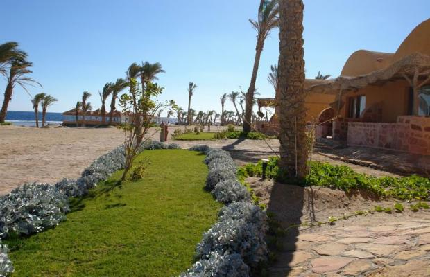 фото отеля Swiss Inn Plaza Resort Marsa Alam (ex. Badawia Resort) изображение №17