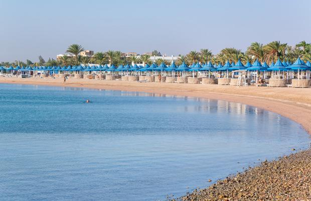 фотографии отеля Grand Resort Hurghada by Red Sea Hotels изображение №35