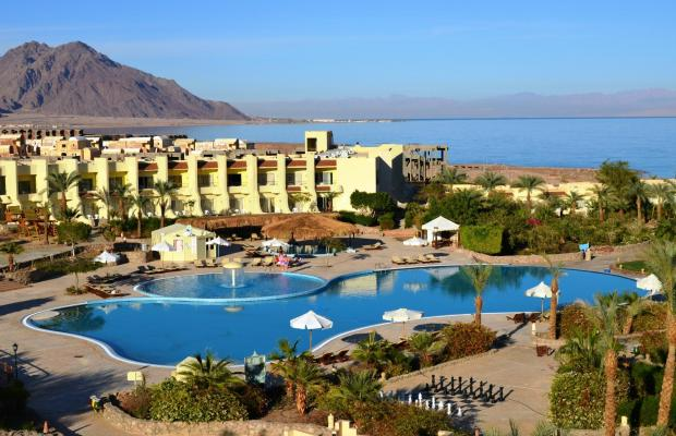 фотографии Dessole Holiday Taba Resort (ех. Holiday Resort Taba) изображение №44