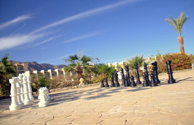 фото Dessole Holiday Taba Resort (ех. Holiday Resort Taba) изображение №30