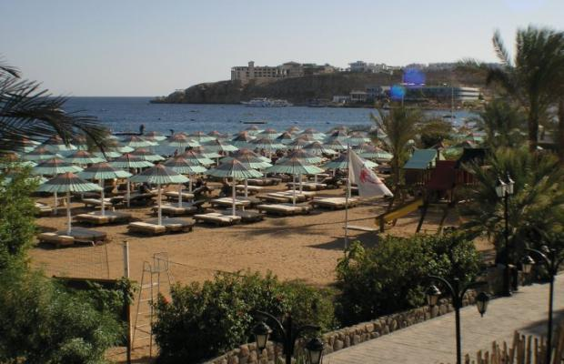 фотографии Red Sea Hotels Ghazala Beach Hotel изображение №24