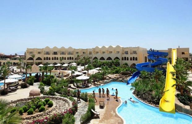 фотографии Palmyra Resort (ех. Three Corners Palmyra Resort; Amar El Zaman) изображение №24