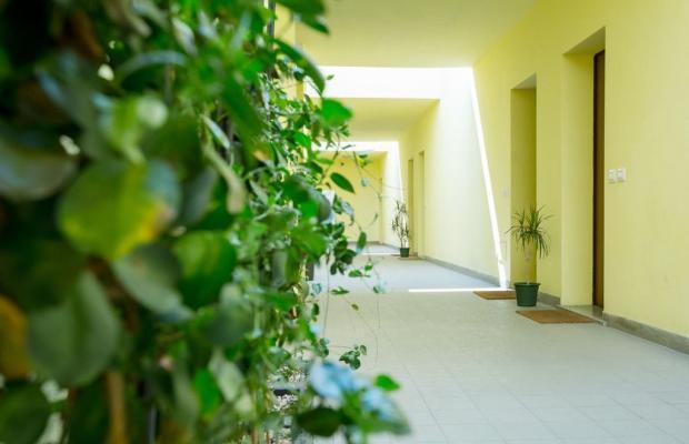 фотографии Nino Residence изображение №12