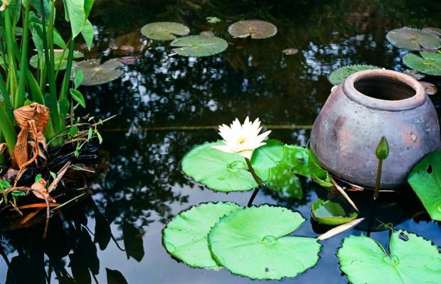 фотографии отеля Hoi An Silk Village Resort & Spa изображение №3