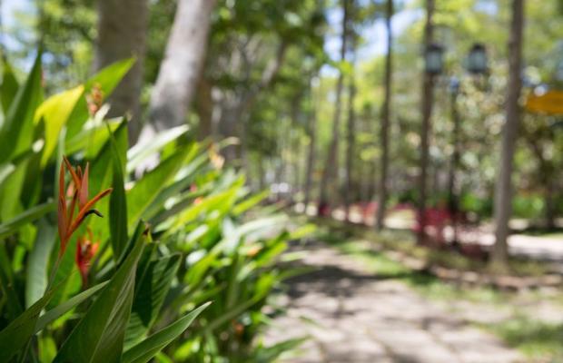 фото Alba Hot Springs Resort изображение №54