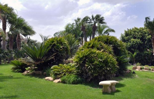 фото Palm Beach Hotel & Bungalows изображение №70