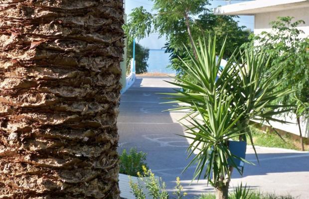 фотографии Aphrodite Hotel & Suites изображение №44